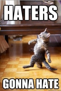 haters gonna hate cat meme