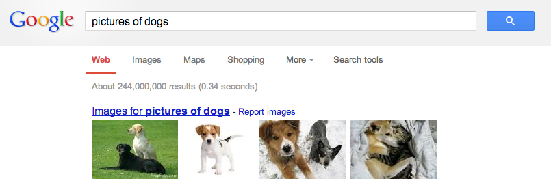 universal search images